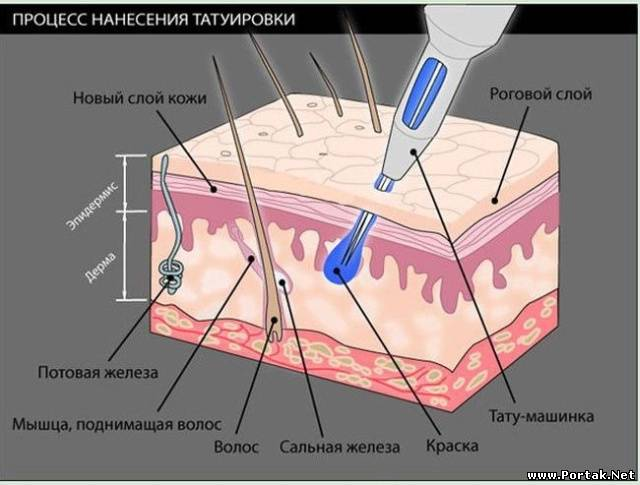 Вредно ли фломастер на кожу